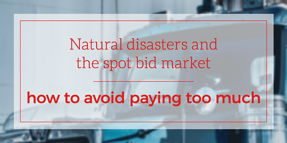 natural-disasters-spot-bid-market (1).png